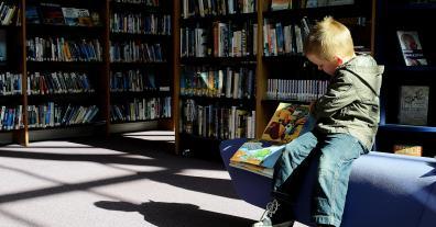 Anke Beilstein / Josef Dötsch: Keine Härtetests für Lernplattformen des Landes